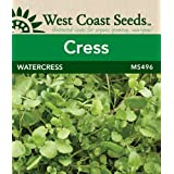 Cress Seeds - Watercress