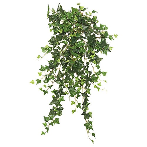 - Vickerman FB170801 Hanging Mini Ivy