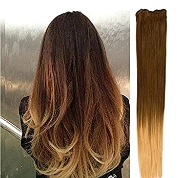 18 clip in dip dye ombre 100 human hair extensions light brown 18quot clip in dip dye ombre 100 human hair extensions light brown pmusecretfo Gallery