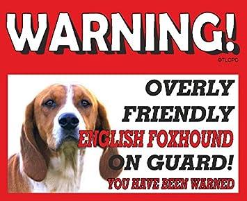 Inglese piano cottura in metallo per cane Foxhound Guard 10 FL oz ...