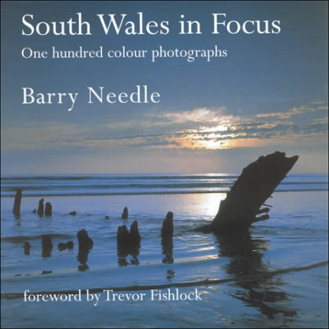 Download South Wales in Focus pdf epub