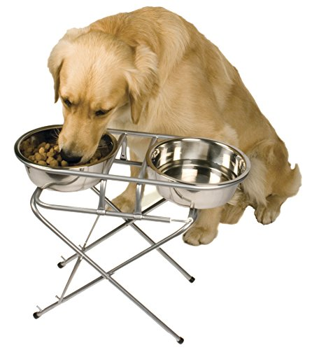 Best Adjustable Elevated Dog Bowl And Stand Set Raised