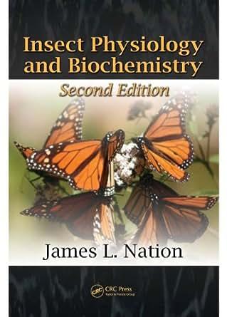 buy Geometry: Volume 2: Spaces of