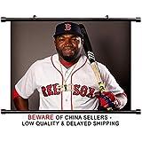 David Ortiz MLB Baseball Superstar Fabric Wall Scroll Poster (32x26) Inches