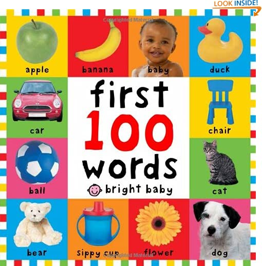 First 100 Words (Bright Baby) by Roger Priddy