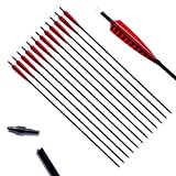 PG1ARCHERY 30 Inch Hunting Target Arrows, Carbon Arrows 5'' Red Shield Feather Fletching with Removable Screw-in Field Points Tips for Recurve & Traditional Bow
