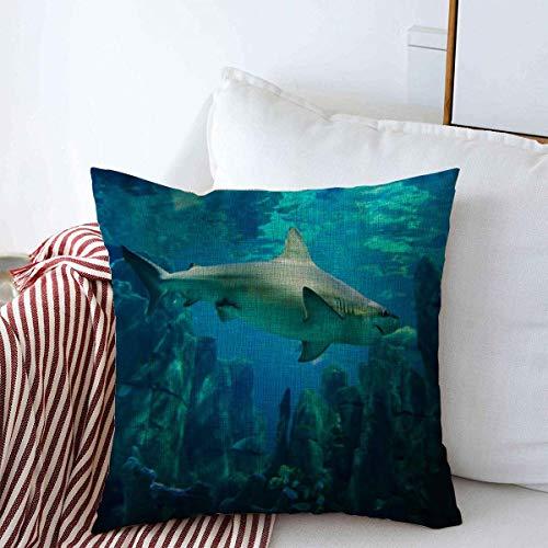 Throw Pillows Covers Cushion Case Blue Big Shark Fin Gray Aquarium Below Caribbean Sea Color Design Saltwater Cotton Linen for Fall Couch Home Decor 16 x 16 Inches