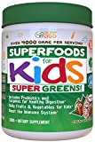 Doctor Formulated: Superfood Greens For Kids (60-Day): CoCoa Chocolate, Organic Ingredients , Vitamins, Gluten Free, Vegan, Whole Food Powder – Fruits & Veggies, Probiotics, Digestive Enzymes