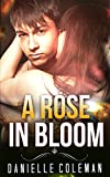 PARANORMAL ROMANCE: A Rose in Bloom (Shifter Stories Collection with BBW and Alpha Males Collection) (Romance Collection Mix: Multiple Genres Book 1)
