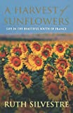 A Harvest of Sunflowers by Ruth Silvestre front cover