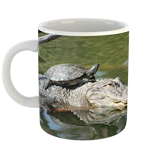 Westlake Art - Alligator Turtle - 11oz Coffee Cup Mug - Modern Picture Photography Artwork Home Office Birthday Gift - 11 Ounce (F32C-7A4BC)