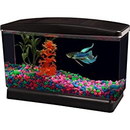 Aqua Culture Bettaview Betta Fish Aquarium .5 1/2 Gallon with Divider