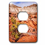 3dRose DanielaPhotography - Landscape, Nature - Hanging on the cliff at Kodachrome Basin State Park, Utah, USA. - Light Switch Covers - 2 plug outlet cover (lsp_282029_6)
