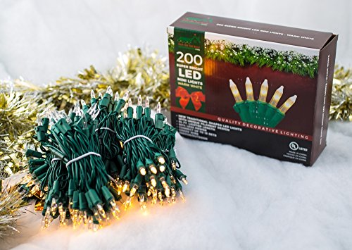 200 Led Christmas Lights Warm White in Florida - 3
