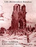 img - for HISTORY OF THE 12TH (BERMONDSEY) BATTALION EAST SURREY REGIMENT book / textbook / text book