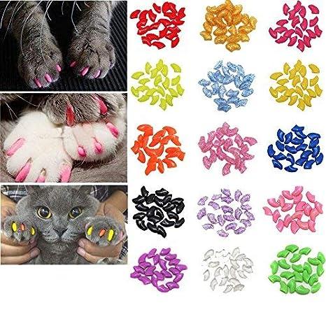 Smirk Sumer - Juego de 100 Tapas de uñas para Gatos y Gatos (Incluye 5