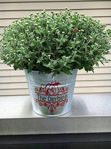 - Personalized 5.5 Qt Galvanized Planter Bucket