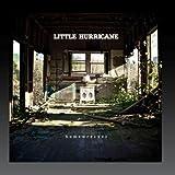 Little Hurricane Gold Fever Lp Amazon Com Music