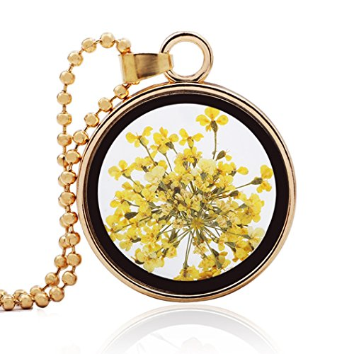 - NORE FUN Charm Pressed Flower Circular Glass Pendant Beads Chain Necklace