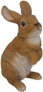 Hi-Line Gift Ltd Standing Rabbit Statue