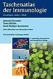 img - for Taschenatlas der Immunologie. by Antonio Pezzutto (2005-06-30) book / textbook / text book