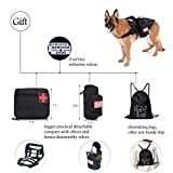 Hanshengday Tactical Dog Vest-Training Molle