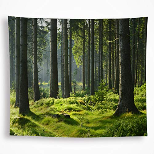(VAKADO Forest Tree Tapestry Wall Hanging Nature Spring Outdoor Scene Wall Blanket Evergreen Sunrise Misty Landscape Woods Home Décor for Bedroom Living Room Dorm 51