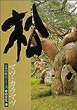 松―マツ・カラマツ (日本の原点シリーズ木の文化 (3))