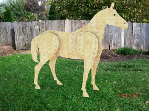 Amazon Com A Woodworking Plan To Build A 3 D Life Size Horse No