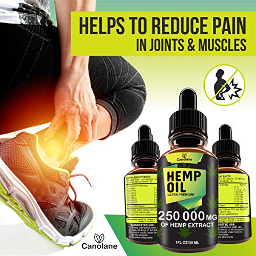 51EKNQ60QDL - Hemp Oil Drops, 250 000 mg, Natural CO2 Extracted, 100% Organic, Pain, Stress, Anxiety Relief, Reduce Insomnia, Vegan Friendly, Zero CBD, Zero THC