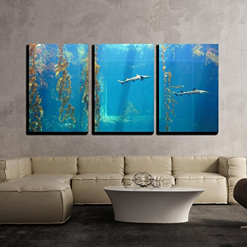 "Wall26 - 3 Piece Canvas Wall Art - Small Shark in the Ocean with Amazing Light Ray - Modern Home Decor Stretched and Framed Ready to Hang - 24""x36""x3 Panels"