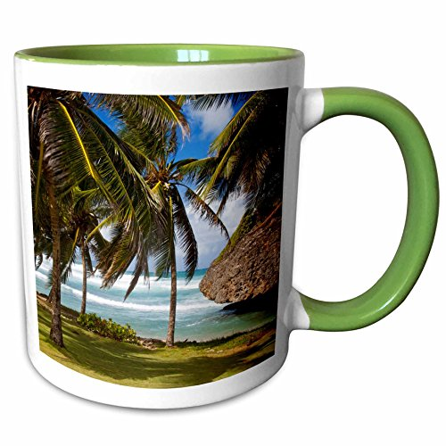 3dRose Danita Delimont - Barbados - Bathsheba Rock, Barbados, West Indies - CA06 BJN0010 - Brian Jannsen - 15oz Two-Tone Green Mug (mug_134153_12)