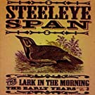 The Lark In Morning - The Early Years -  Steeleye Span