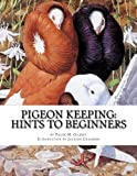 Pigeon Keeping: Hints To Beginners