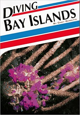 Diving Bay Islands