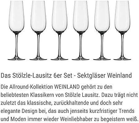 Stölzle lausitz - Copas de vino espumoso. weinland 200ml, conjunto de 6, apto para el lavavajillas copas de champán