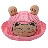 Wesracia Baby Girls Cute Hat Sun Protection,Breathable Soft Straw Hats Cartoon Kitty Hat with Ears 6~24 Months Old (Pink)