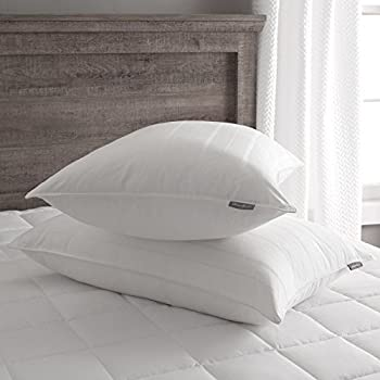 Amazon Com Eddie Bauer Luxury 700 Fill Power White Goose