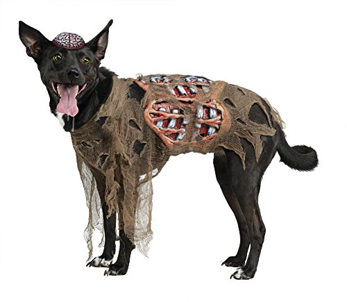Fun World Kid's Zombie Dog Costume Childrens Costume, Multi, Small -