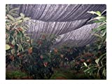 30% Sunblock Shade Cloth for Plant Cover Greenhouse Barn 10Ft x 30Ft