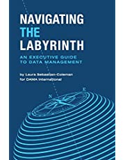 Navigating the Labyrinth: An Executive Guide to Data Management