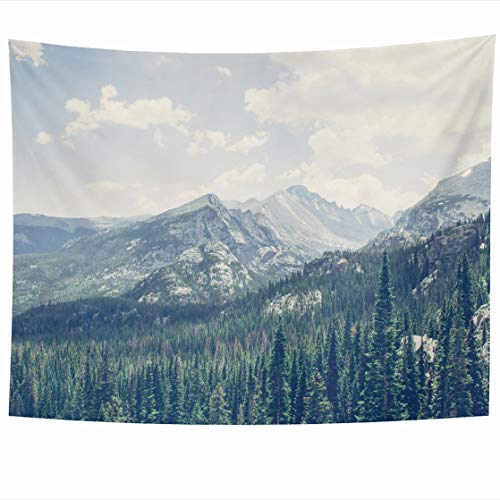DIYCow Tapestry Wall Decor 80 x 60 Inches Colorful Summer Mountain Peaks Rocky National Park Colorado June Sharon Kilon Han Orange Lake Tapestries Wall Hanging Home Decor for Home Office Bedroom