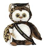 #6: Bearington Wisdom Class of 2018 Graduation Plush Stuffed Animal Owl, 8.5