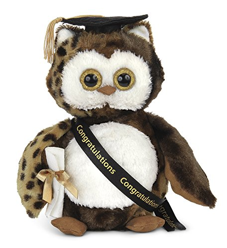 Bearington Wisdom Class of 2018 Graduation Plush Stuffed Animal Owl, 8.5