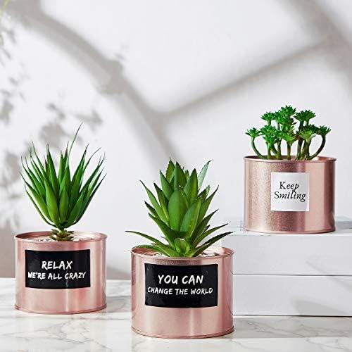 Artificial Succulent Plants for Women Desk – Fake Succulent Plant Set – Office Decor Faux Succulents in Rose Gold Pots – Mini Succulent Decor for Bedroom Bathroom Bookshelf Dorm Accessories 3-Pack 51EKtQgUydL