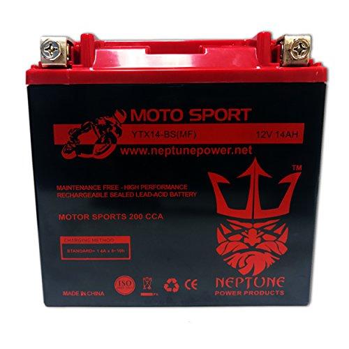 YTX14-BS High Performance Battery for Honda VT1100 Shadow C2 Sabre 00-07 by Neptune (Sabre Honda Vt1100 07)