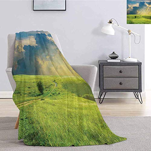 Nature Faux Fleece Throw Blanket Summer Landscape with The Grass Road Cloudscape and Rural Novelty View Image Print Super Soft Cozy Queen Blanket W70 x L93 Inch Blue Green