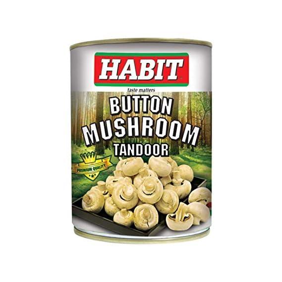 ELLIS HARVEY Habit Button Mushroom Tandoor