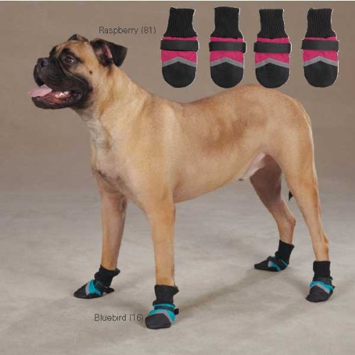 Brite Dog Boot Color: Bluebird, Size: X-Small, My Pet Supplies