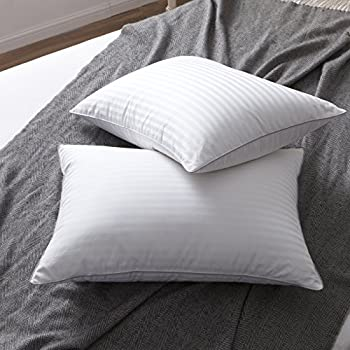 Puredown Natural Goose Down Feather White Pillow Inserts For Mesmerizing 100 Down Pillow Inserts